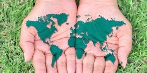 Россияне все больше хотят жить за границей